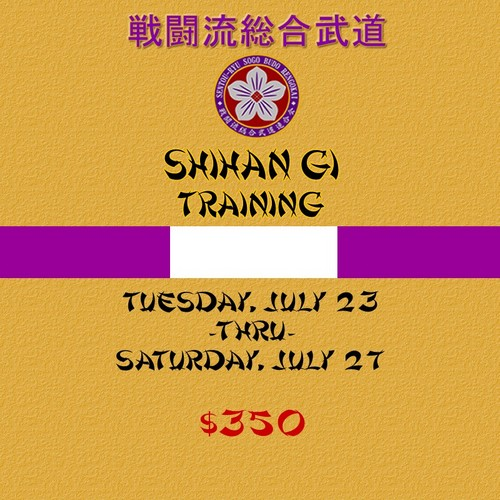Shihan Gi Training